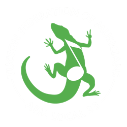 Tucson Music Pros
